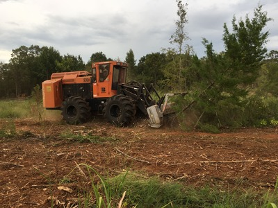 image of machine cutting down trees for Midstate Land Clearing and Forestry Mulching LLC