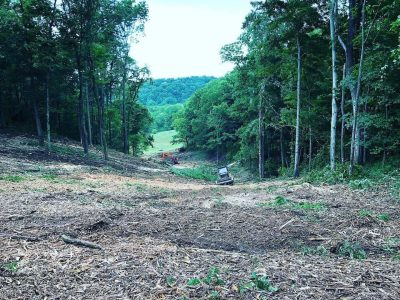 image of mulching machines amidst trees for Midstate Land Clearing and Forestry Mulching LLC